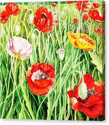 Bunch Of Poppies II Canvas Print by Irina Sztukowski