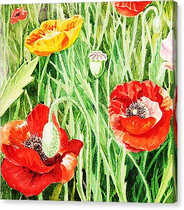 Bunch Of Poppies IIi Canvas Print