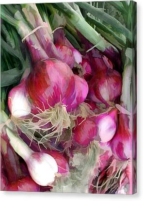 Bunch Of Red Onions Canvas Print by Elaine Plesser