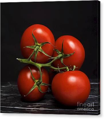 Bunch Of Tomatoes. Canvas Print by Bernard Jaubert