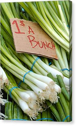 Locally Grown Canvas Print - Bunches Of Onions by Teri Virbickis