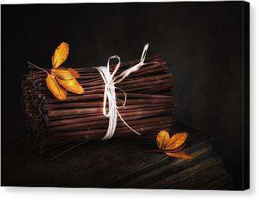 Bundle Of Sticks Still Life Canvas Print