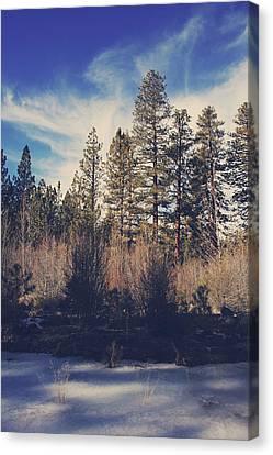 Winter Landscapes Canvas Print - Bundle Up by Laurie Search