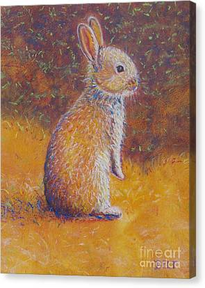 Bunny At Snickerhaus Garden Canvas Print by Christine Belt