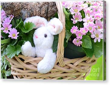 Bunny In A Basket Canvas Print by Kathleen Struckle