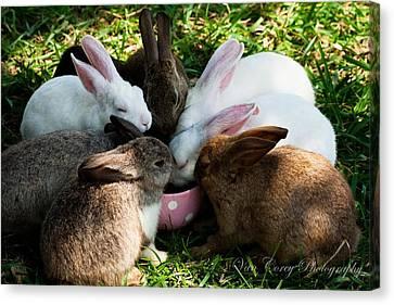 Bunny Tea Party Canvas Print