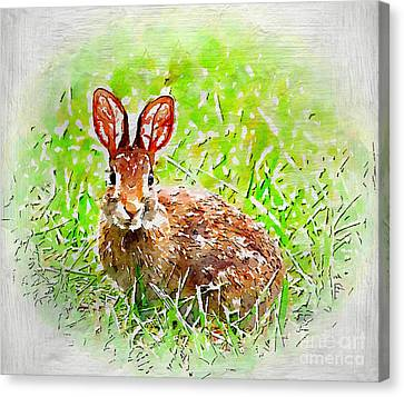 Bunny - Watercolor Art Canvas Print by Kerri Farley