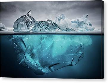 Transparency Canvas Print - Buoyancy by Justin Hofman
