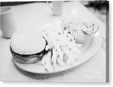 Burger Crinkle Cut Fries And Salad In A Cheap Diner In North America Canvas Print by Joe Fox