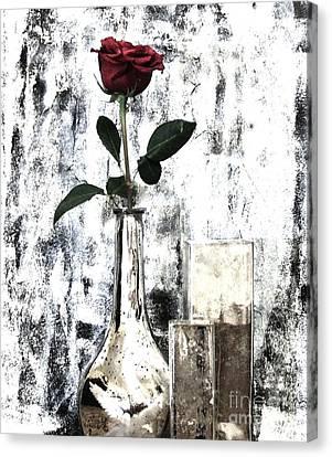Burgundy Beauty Rose Canvas Print by Marsha Heiken