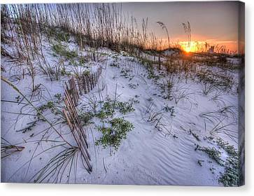 Buried Fences Canvas Print by Michael Thomas