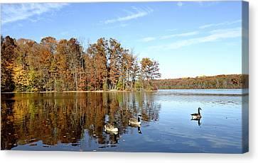 Burke Lake Park In Fairfax Virginia Canvas Print by Brendan Reals