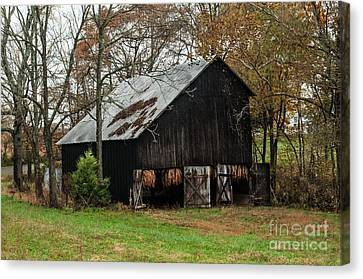 Canvas Print featuring the photograph Burley Tobacco  Barn by Debbie Green