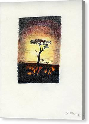 Burning Bush Canvas Print by Jason Morgan
