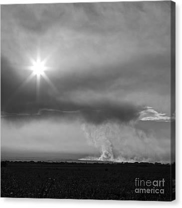 Burnt Canvas Print - Burning Sugar Cane Fields Maui Hawaii by Edward Fielding