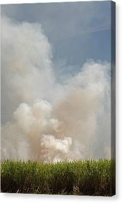 Franklin Farm Canvas Print - Burning Sugar Cane by Jim West