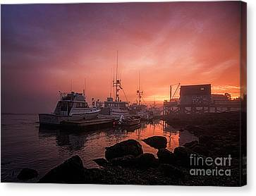 Burning Thru The Fog Canvas Print