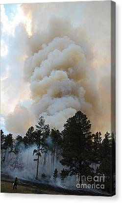 Canvas Print featuring the photograph Burnout Near Song Dog Road by Bill Gabbert