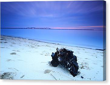 Canvas Print featuring the photograph Burnt Driftwood Sunset by Jennifer Casey