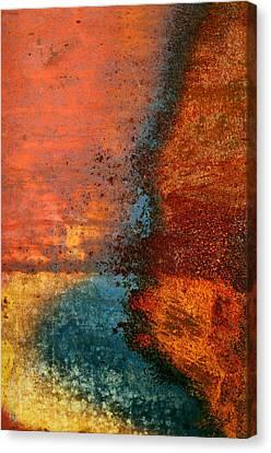 Burnt Orange Canvas Print by Tom Druin