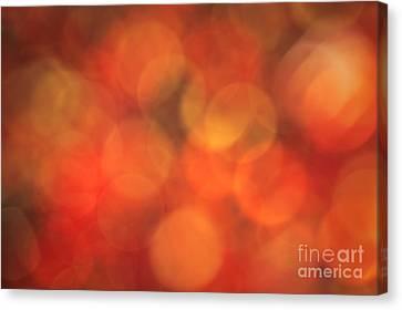 Burnt Sugar Canvas Print by Jan Bickerton