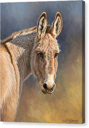 Burro Canvas Print by Paul Krapf