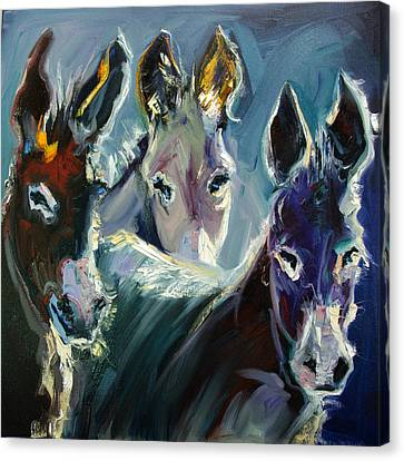 Burro Three Canvas Print