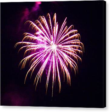 4th Of July Fireworks 25 Canvas Print by Howard Tenke
