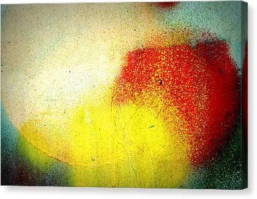 Burst Canvas Print by Leanna Lomanski