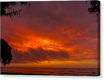 Bursting Sky Canvas Print