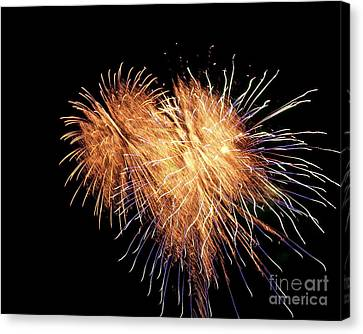 Canvas Print featuring the photograph Bursting With Love by Eve Spring