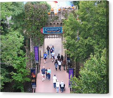 Canvas Print featuring the photograph Busch Gardens - 12124 by DC Photographer