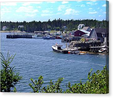 Bush Island Nova Scotia Canvas Print by George Cousins