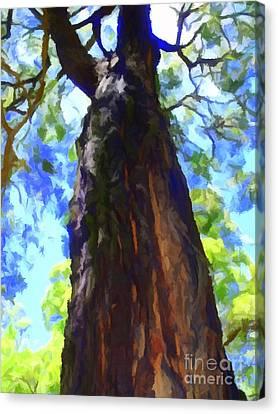 Bushfire Survivor Canvas Print