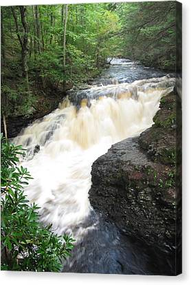 Canvas Print featuring the photograph Bushkill Rapids by Richard Reeve