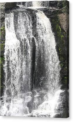 Bushkill Waterfalls Canvas Print by John Telfer
