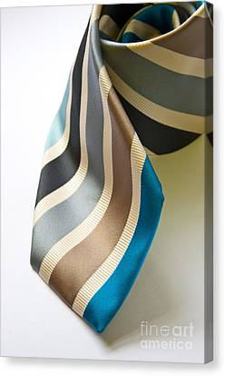 Business Tie Canvas Print by Tim Hester