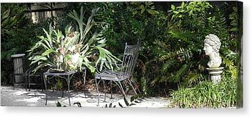 Bust In A Garden With Staghorn Fern Canvas Print by Patricia Greer
