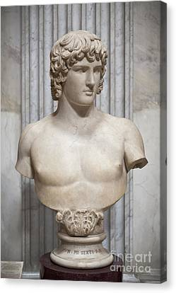 Bust Of Antinous Canvas Print by Roberto Morgenthaler