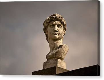 Canvas Print featuring the photograph Bust Of Apollo by Nadalyn Larsen