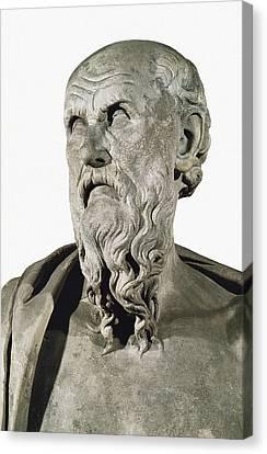 Bust Of Hesiod. 8th C. Ad. Greek Art Canvas Print by Everett