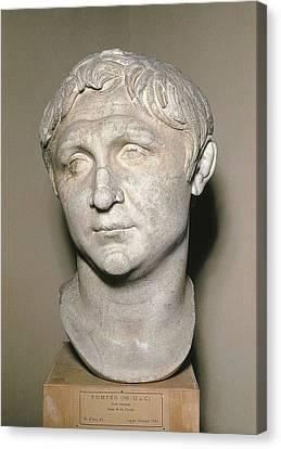 Bust Of Pompey. 1st C. Copy Canvas Print