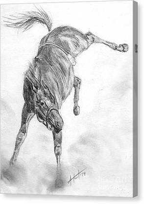 Busted Bronc Canvas Print by Audrey Van Tassell