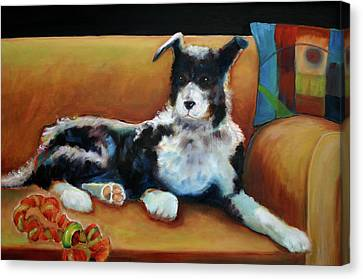 Buster The Border Collie Canvas Print