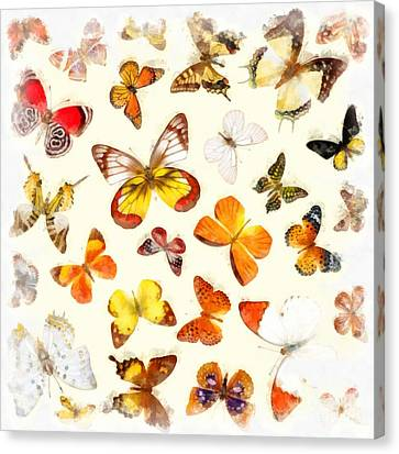 Butterflies Square Canvas Print by Edward Fielding