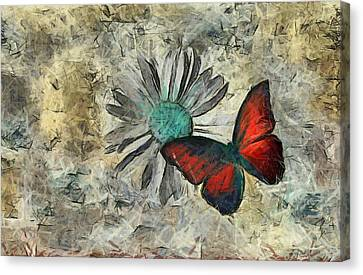 Butterfly And Daisy - Ftd01t01 Canvas Print by Variance Collections