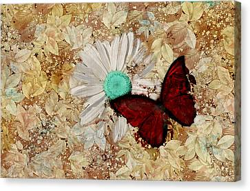 Butterfly And Daisy - S3003c Canvas Print by Variance Collections