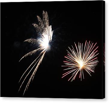 Butterfly And Flower Fireworks Canvas Print by Howard Tenke