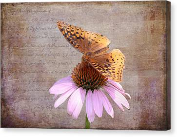 Kim Klassen Texture Canvas Print - Butterfly And Flower by KJ DeWaal