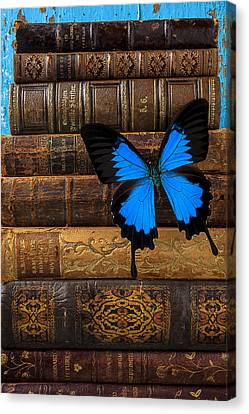 Butterfly And Old Books Canvas Print by Garry Gay